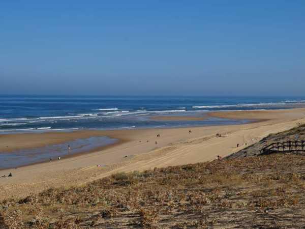 baignade côte landaise plage sable fin messanges