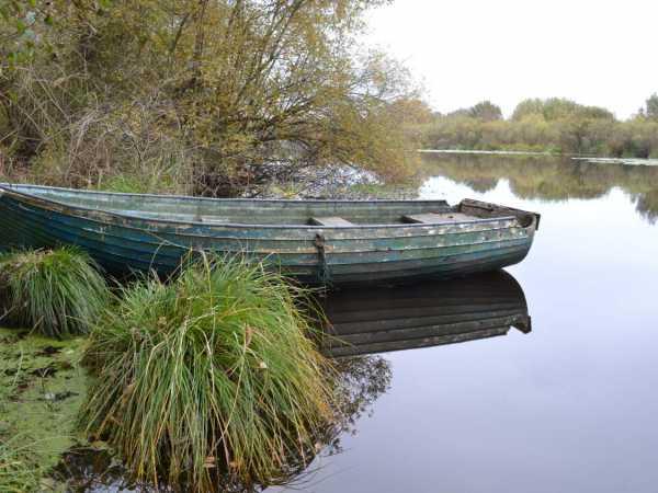 barque rives moïsan proche messanges landes